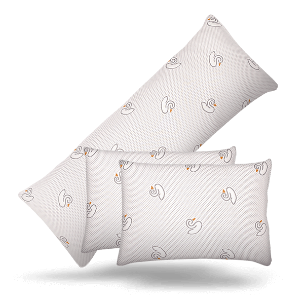 Two Queen & Body Pillow Bundle